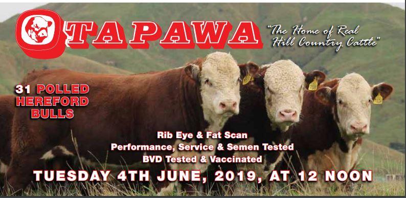 Otapawa Station Ltd